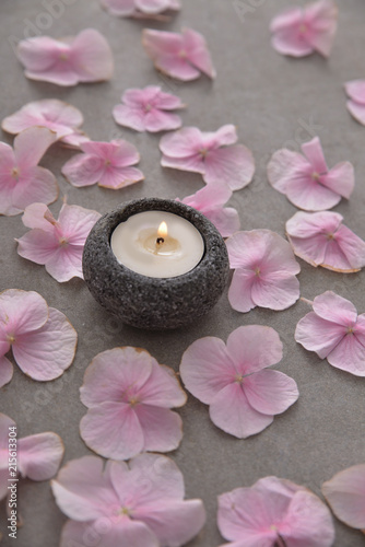 Plexiglas Spa Many Pink hydrangea petals with candle in stone bowl on gray background