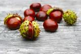 Kastanien im Herbst als Arzeneimittel, Heilmittel, Arzenei - Alternativmedizin - 215630168