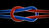 Red and blue ropes forming a knot - 215639523