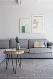 Plant on table on grey carpet in living room interior with poste