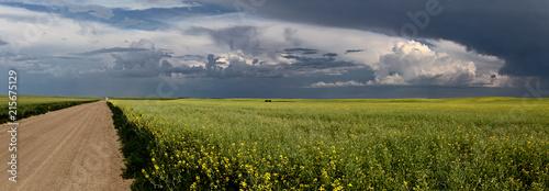 Foto Spatwand Zomer Prairie Storm Clouds