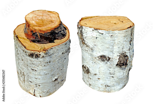 Isolated photo of birch stumps on white - 215682367