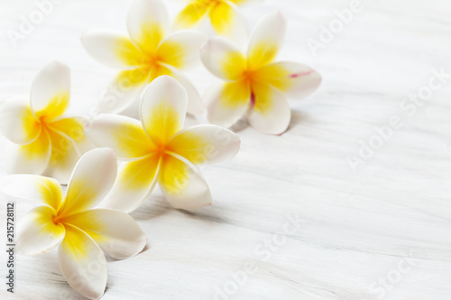 Plexiglas Plumeria Frangipani flower on white background