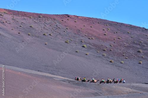 Fotobehang Kameel Volcanic landscapes on Timanfaya.