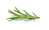 Rosemary isolated on white background - 215750903