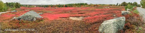 Red colors of foliage landscape in New England, panoramic view - 215778709