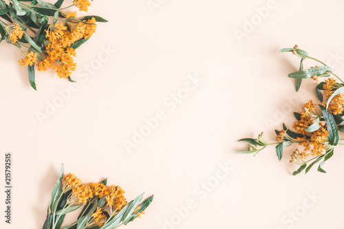 Autumn composition. Frame made of fresh orange flowers on pastel beige background. Autumn, fall concept. Flat lay, top view, copy space - 215792515