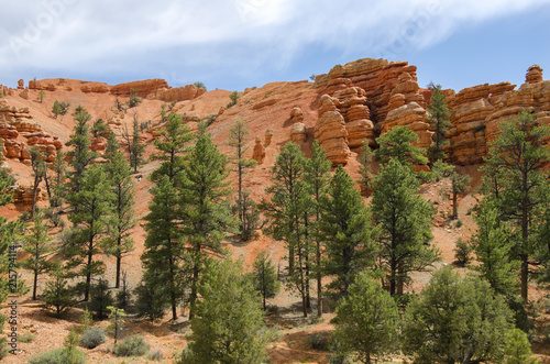 In de dag Arizona landscape on the bryce canyon in the united states of america