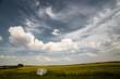 landscape of fields in Russia