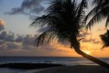 Tropical beach - 215797922