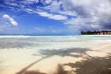 tropical beach - 215798933