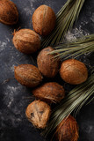 Coconuts on a dark background. - 215800944