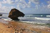 Bathseba beach - 215806323