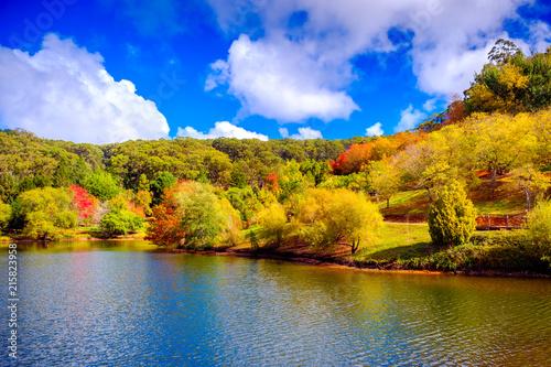 Colorful Australian autumn in Adelaide Hills © amophoto.net
