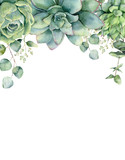 Watercolor card with succulents and eucalyptus leaves. Hand painted eucalyptus branch, green succulents isolated on white background. Floral botanical illustration for design, print or background. - 215825563