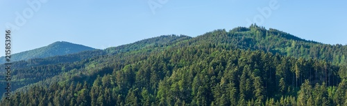 Germany, XXL black forest landscape panorama with blue sky - 215853916