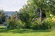 Leinwanddruck Bild - summer backyard garden landscape, blue hibiscus flowers, grill in the background