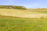 Farm field, rocks and iron fence