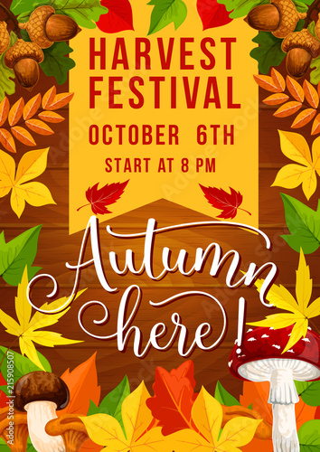 Fall festival and autumn harvest fest invitation - 215908507