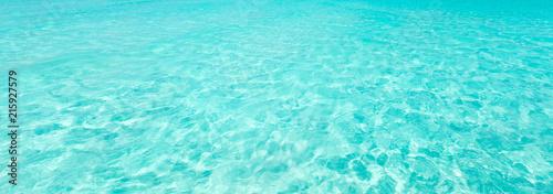 Aluminium Groene koraal ocean water background