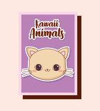 kawaii cat icon over colorful squares and pink background. vector illustration