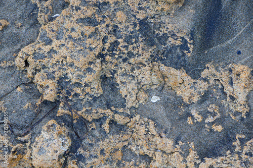 Aluminium Stenen The surface of an old rock with cracks. Old rock texture. Wild background.