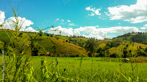 Foto Spatwand Turkoois Panoramic View Of Agricultural Field Against Sky in Chiang Mai Thailand.
