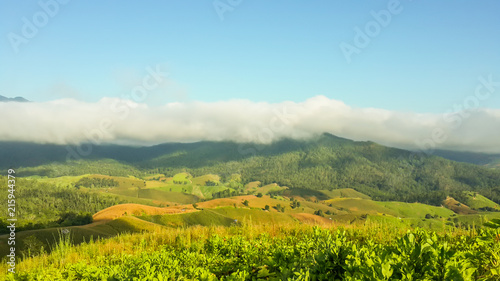 Fotobehang Pool Panoramic View Of Agricultural Field Against Sky in Chiang Mai Thailand.
