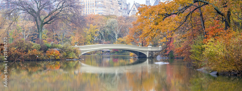 Bow bridge Central Park - 215965770