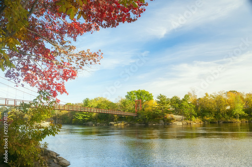 Suspension bridge over the river and many beautiful autumn trees. Sunny autumn day. USA. Maine.  - 215974181