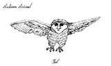 Hand Drawn of Autumn Owl on White Background