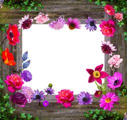 Composition of Garden flowers on wooden background.