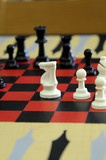 White Knight Chess Piece