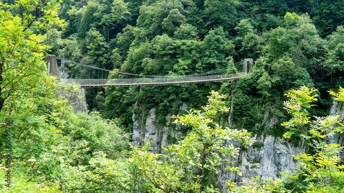 Holtzarte suspension bridge, Aquitaine, France