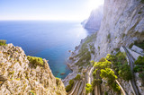 Scenic view of a winding path through pine trees down to the dazzling Mediterranean blue waters from the dramatic clifftop mountain coastline of the island of Capri, Italy