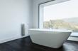 Minimalist bathroom with tub and towel holder