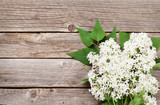 White lilac flowers - 216020523