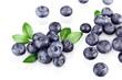 Leinwanddruck Bild - Blueberry.