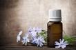Herbal medicine. - 216049143