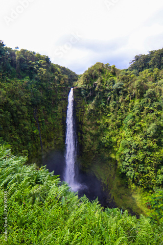 Hawaii Travels - 216058138