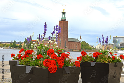 In de dag Stockholm Flowers on background of Stockholm City Hall (1923), building of Municipal Council for City of Stockholm in Sweden