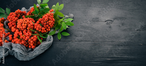 Red ashberry with leaves on a black wooden background. Top view. Free space for your text.