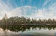 Отражение в лесу / Reflection in the forest