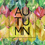 Beautiful lovely cute graphic bright floral herbal autumn green yellow red autumn leaves background card with lettering autumn  watercolor
