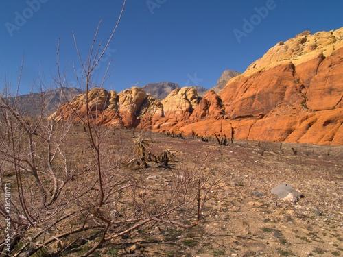 Canvas Cappuccino Nevada Desert