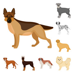 Dog breeds cartoon icons in set collection for design.Dog pet vector symbol stock web illustration.