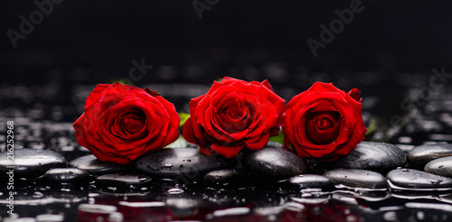 Plexiglas Spa Still life with three red rose and wet stones