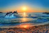 Delfiny skacze w błękitnym morzu Tajlandia przy zmierzchem