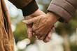Leinwanddruck Bild - Elderly couple holding hands and walking