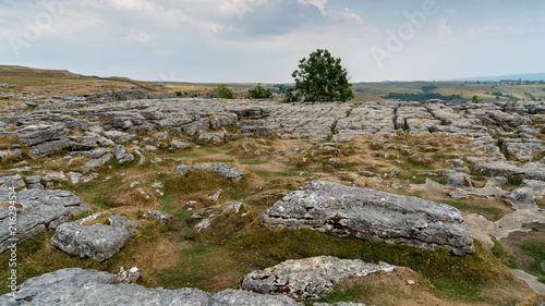 Fotobehang Bleke violet View of the Limestone Pavement above Malham Cove in the Yorkshire Dales National Park